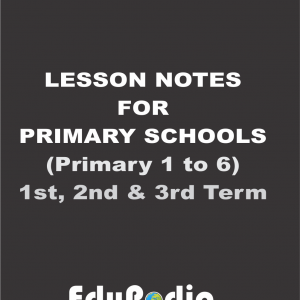 Lesson notes for primary schools